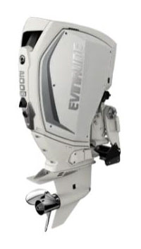 Evinrude E-TEC G2 200 HO (H200WXCA) in Wilmington, Illinois