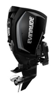 Evinrude E-TEC G2 250 HO (H250HGLO) in Wilmington, Illinois