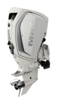 Evinrude E-TEC G2 250 HO (H250HWXF) in Wilmington, Illinois