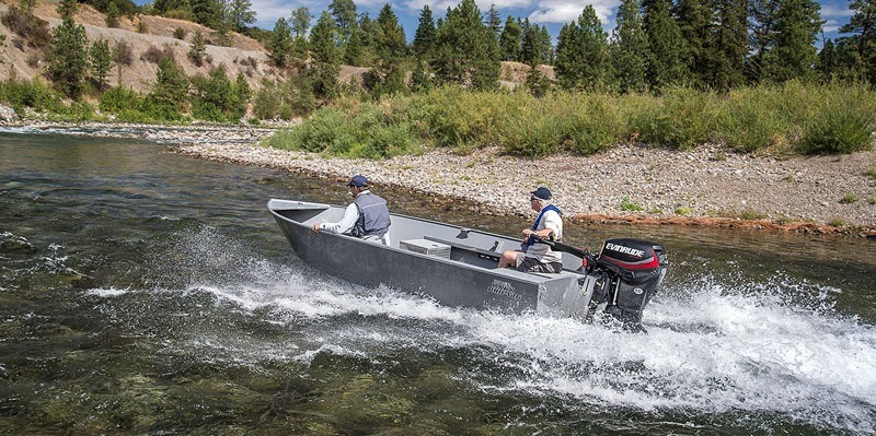 2019 Evinrude E-TEC Jet 40 HP (E40DGTL) in Deerwood, Minnesota - Photo 2