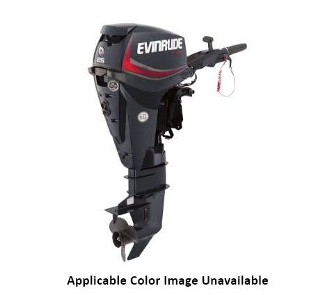 Evinrude E-TEC 25 HP (E25DRSL) in Deerwood, Minnesota