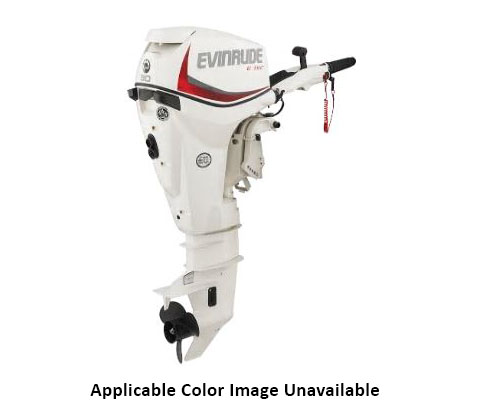 Evinrude E-TEC 30 HP (E30DRGL) in Deerwood, Minnesota