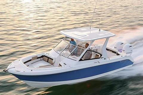 2019 Edgewater 262 CX in Niceville, Florida