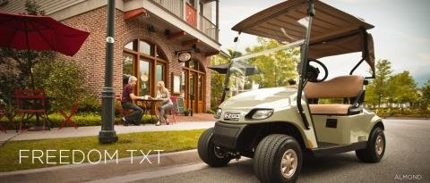 2014 E-Z-Go Freedom TXT Electric in Exeter, Rhode Island