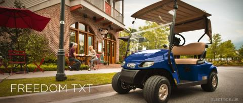 2016 E-Z-Go Freedom TXT Electric in Caruthersville, Missouri
