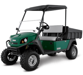 2016 E-Z-Go Terrain 1000 Electric in Cable, Wisconsin