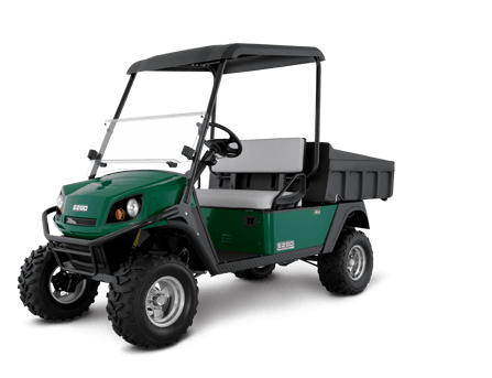 2016 E-Z-Go Terrain 1000 Gasoline in Cable, Wisconsin