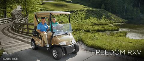 2017 E-Z-Go Golf Freedom RXV Gas in Caruthersville, Missouri