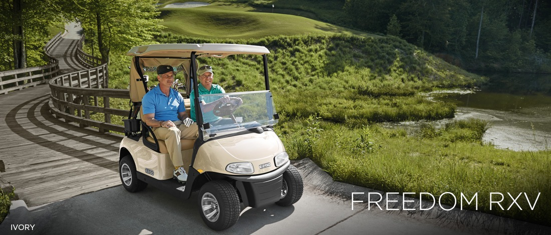 2017 E-Z-Go Golf Freedom RXV Gas in Jasper, Georgia
