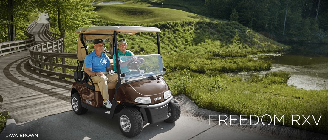 2017 E-Z-Go Golf Freedom RXV Gas in Tifton, Georgia