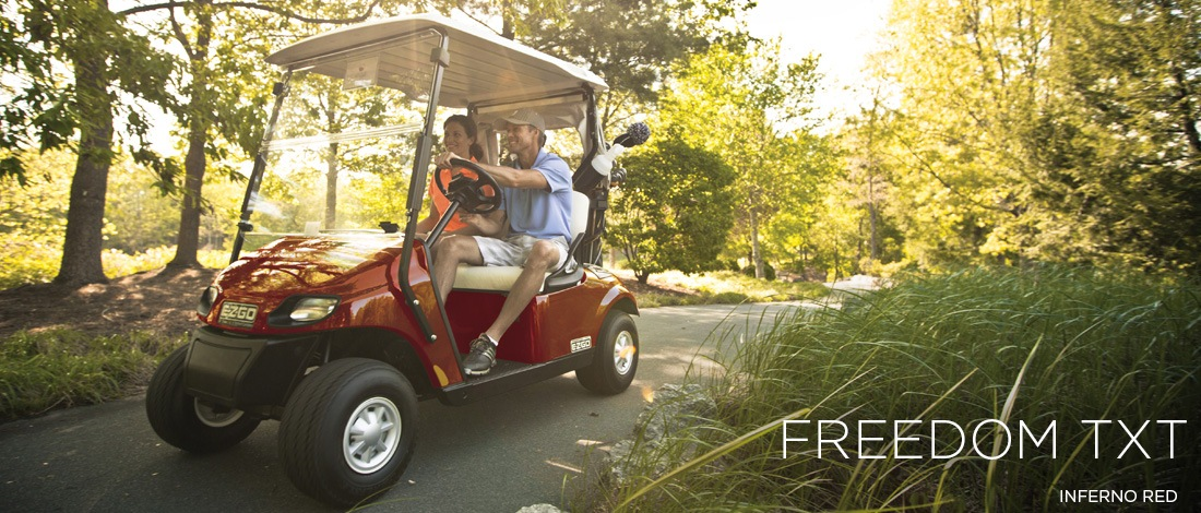2017 E-Z-Go Golf Freedom TXT Electric in Otsego, Minnesota