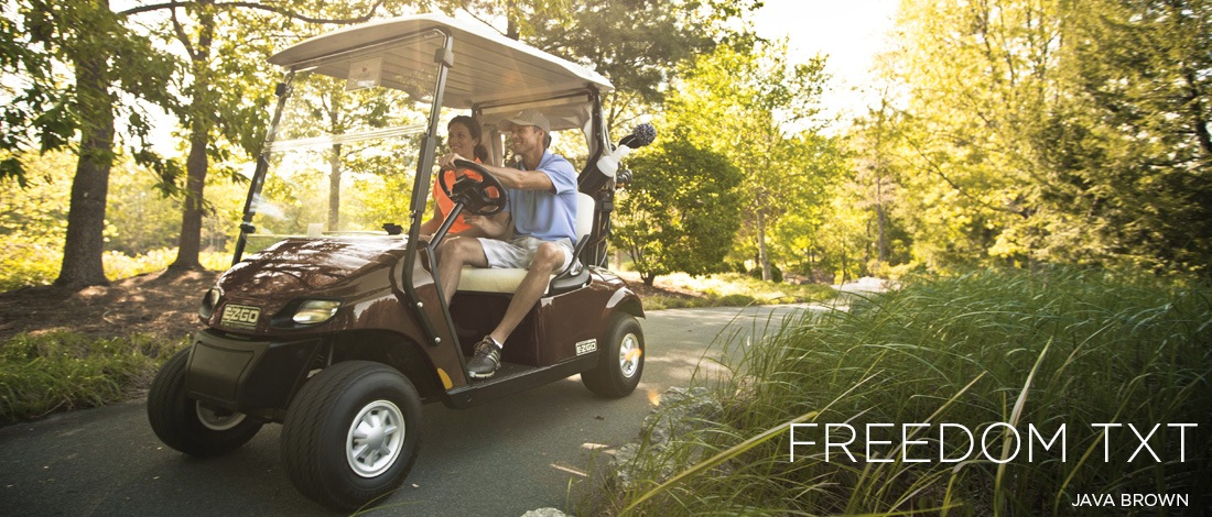 2017 E-Z-Go Golf Freedom TXT Gas in Otsego, Minnesota