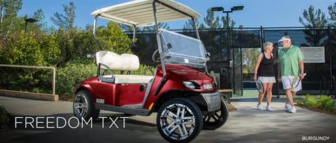 2017 E-Z-Go Personal Freedom TXT Gas in Payson, Arizona