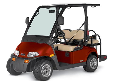 2019 E-Z-Go 2FIVE LSV - 4 Passenger in Harrison, Michigan