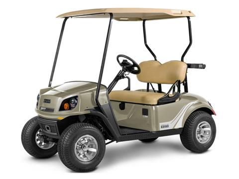 2019 E-Z-Go Freedom 72V in Binghamton, New York