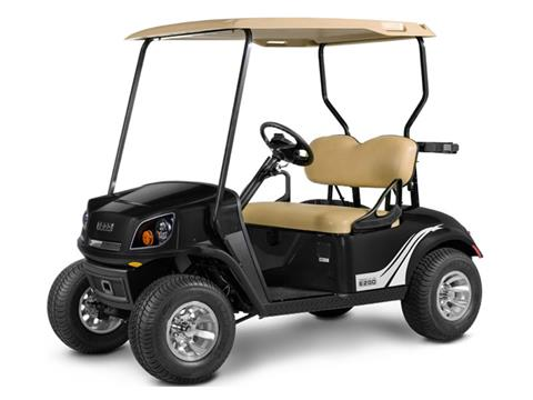 2019 E-Z-GO 72-Volt Freedom in Payson, Arizona - Photo 1