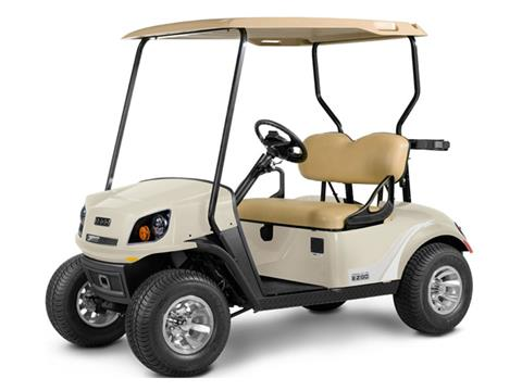 2019 E-Z-Go Freedom 72V in Pinellas Park, Florida