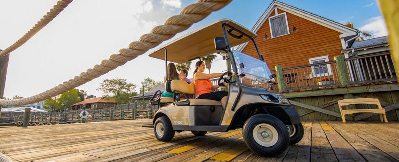 2019 E-Z-Go Freedom TXT 2+2 Electric in Gaylord, Michigan