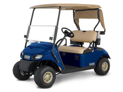 2019 E-Z-Go Freedom TXT (PVT) Electric in Cable, Wisconsin