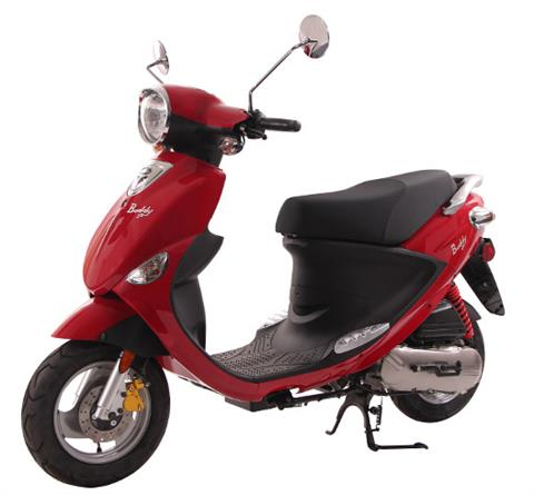2017 Genuine Scooters Buddy 50 in Greensboro, North Carolina