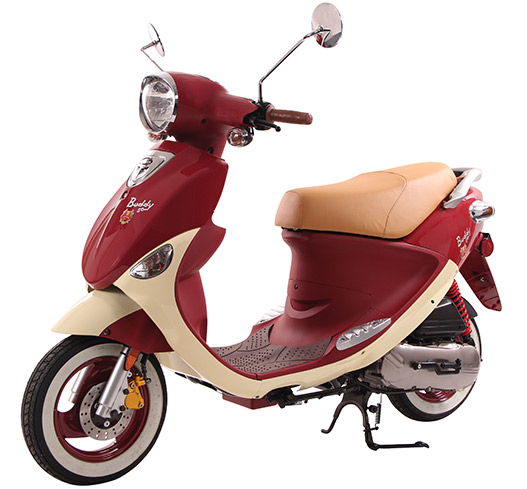 2019 Genuine Scooters Buddy 50 (Little Internationals) in Indianapolis, Indiana