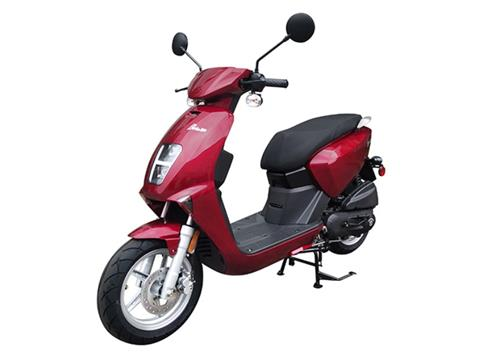 2021 Genuine Scooters Brio 50i in Sturgeon Bay, Wisconsin