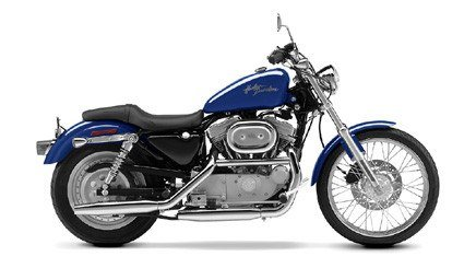 2002 Harley-Davidson XL 883C Sportster® Custom in Monroe, Michigan