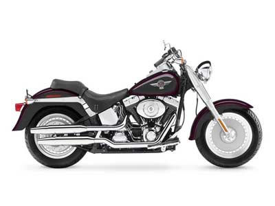 2006 Harley-Davidson Fat Boy® in Sanford, Florida - Photo 29