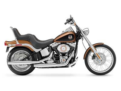 2008 Harley-Davidson Softail® Custom in Ebensburg, Pennsylvania