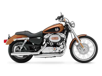 2008 Harley-Davidson Sportster® 1200 Custom in Goldsboro, North Carolina