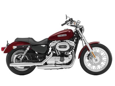2009 Harley-Davidson Sportster® 1200 Low in Cayuta, New York