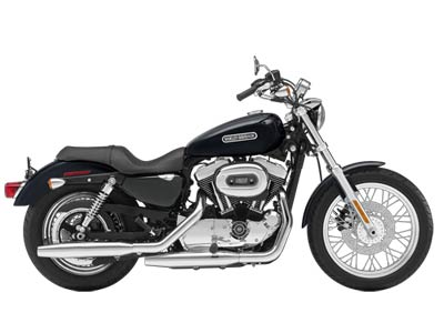 2009 Harley-Davidson Sportster® 1200 Low in Sunbury, Ohio