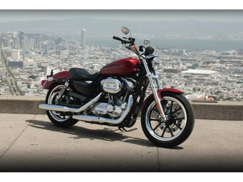 2012 Harley-Davidson Sportster® 883 SuperLow® in Monroe, Michigan - Photo 6