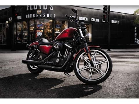 2012 Harley-Davidson Sportster® Iron 883™ in Pinellas Park, Florida - Photo 8