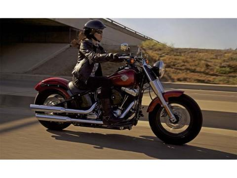 2013 Harley-Davidson Softail Slim® in Kingsport, Tennessee