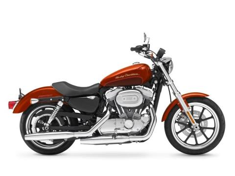 2013 Harley-Davidson Sportster® 883 SuperLow® in Greeneville, Tennessee