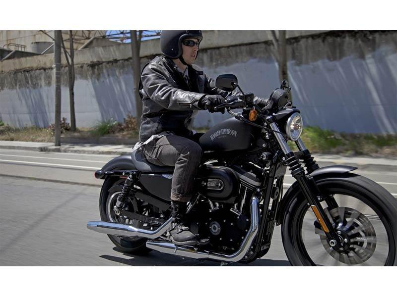 2013 Harley-Davidson Sportster® Iron 883™ in Dimondale, Michigan