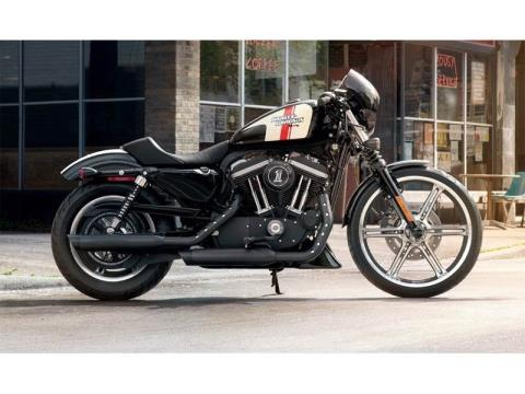 2013 Harley-Davidson Sportster® Iron 883™ in Temecula, California - Photo 19
