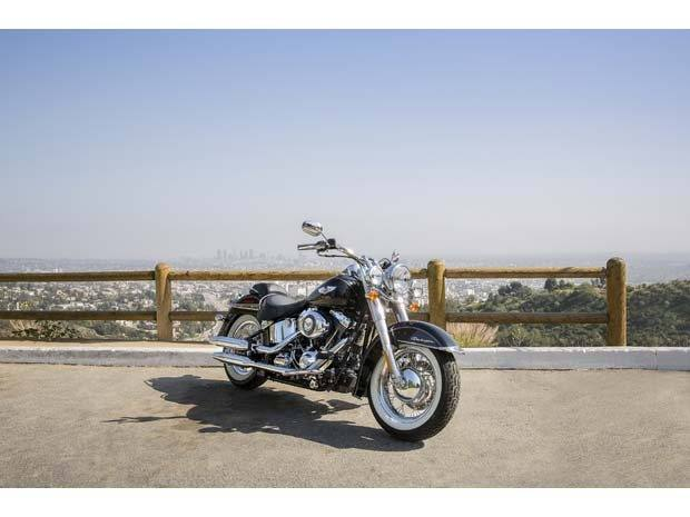 2014 Harley-Davidson Softail® Deluxe in Visalia, California - Photo 10