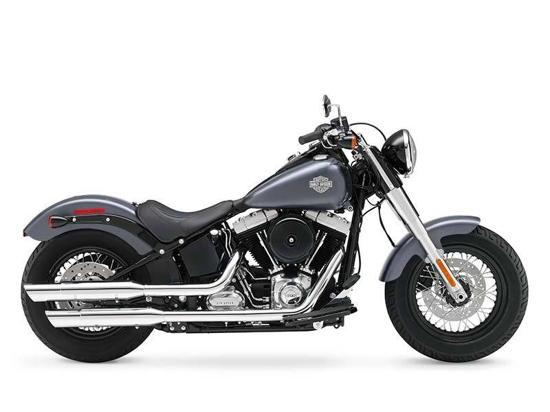 2014 Harley-Davidson Softail Slim® in Athens, Ohio - Photo 13