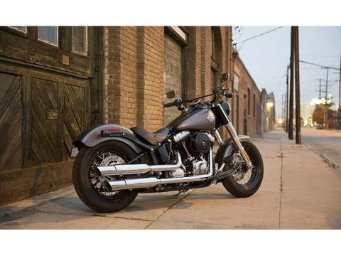 2014 Harley-Davidson Softail Slim® in Athens, Ohio - Photo 18