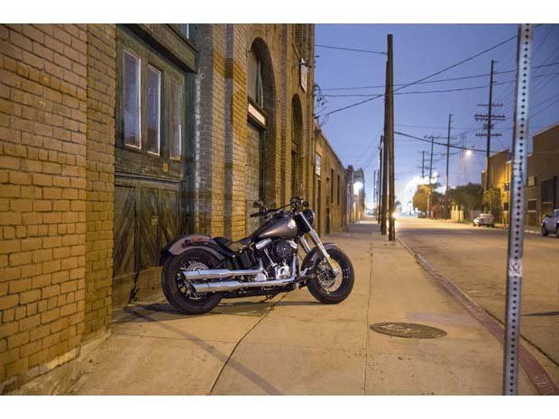 2014 Harley-Davidson Softail Slim® in Athens, Ohio - Photo 17