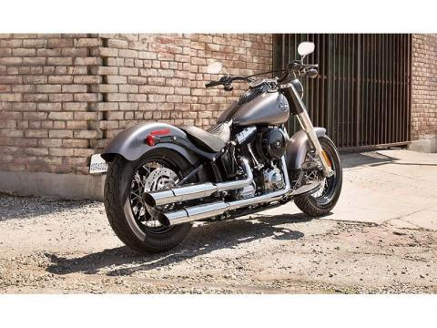 2014 Harley-Davidson Softail Slim® in Loveland, Colorado - Photo 9