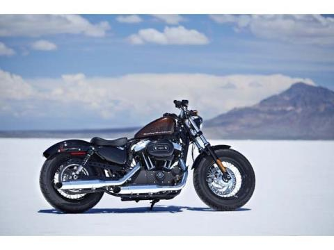 2014 Harley-Davidson Sportster® Forty-Eight® in Cambridge, Ohio - Photo 16