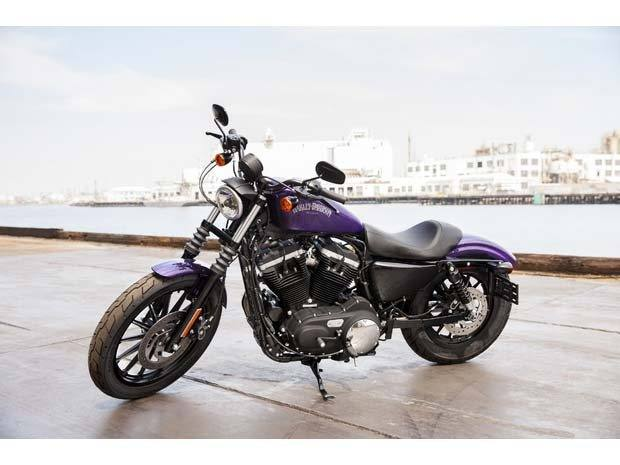 2014 Harley-Davidson Sportster® Iron 883™ in Dubuque, Iowa - Photo 11