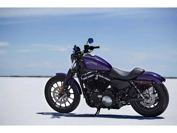 2014 Harley-Davidson Sportster® Iron 883™ in Crystal Lake, Illinois - Photo 19