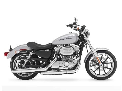 2014 Harley-Davidson Sportster® SuperLow® in Riverhead, New York