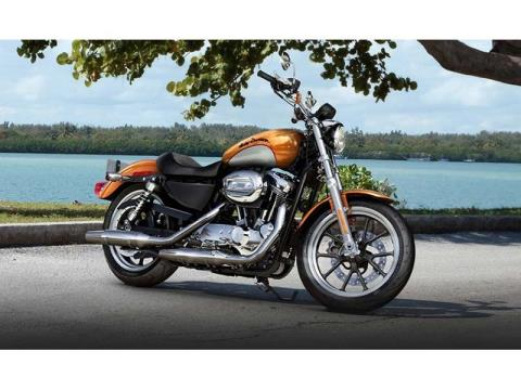 2014 Harley-Davidson Sportster® SuperLow® in Fredericksburg, Virginia - Photo 27