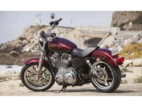 2014 Harley-Davidson Sportster® SuperLow® in Fredericksburg, Virginia - Photo 29