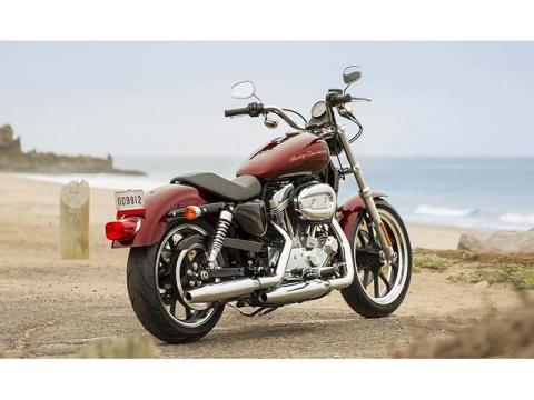 2014 Harley-Davidson Sportster® SuperLow® in Honesdale, Pennsylvania - Photo 10